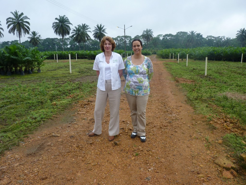 Ecuador palm oil plantation back in 2014 with Sharon Ratcliffe, PBS International